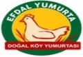 Efdal Yumurta