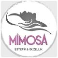Mimosa Estetik ve Güzellik Salonu